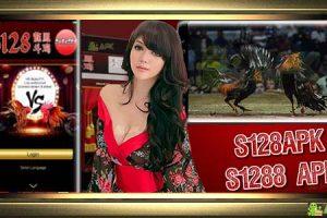 Cara Download S128APK » Aplikasi S128 Sabung Ayam Online