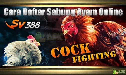 Cara Daftar SV388 Sabung Ayam Online · Cepat dan Mudah